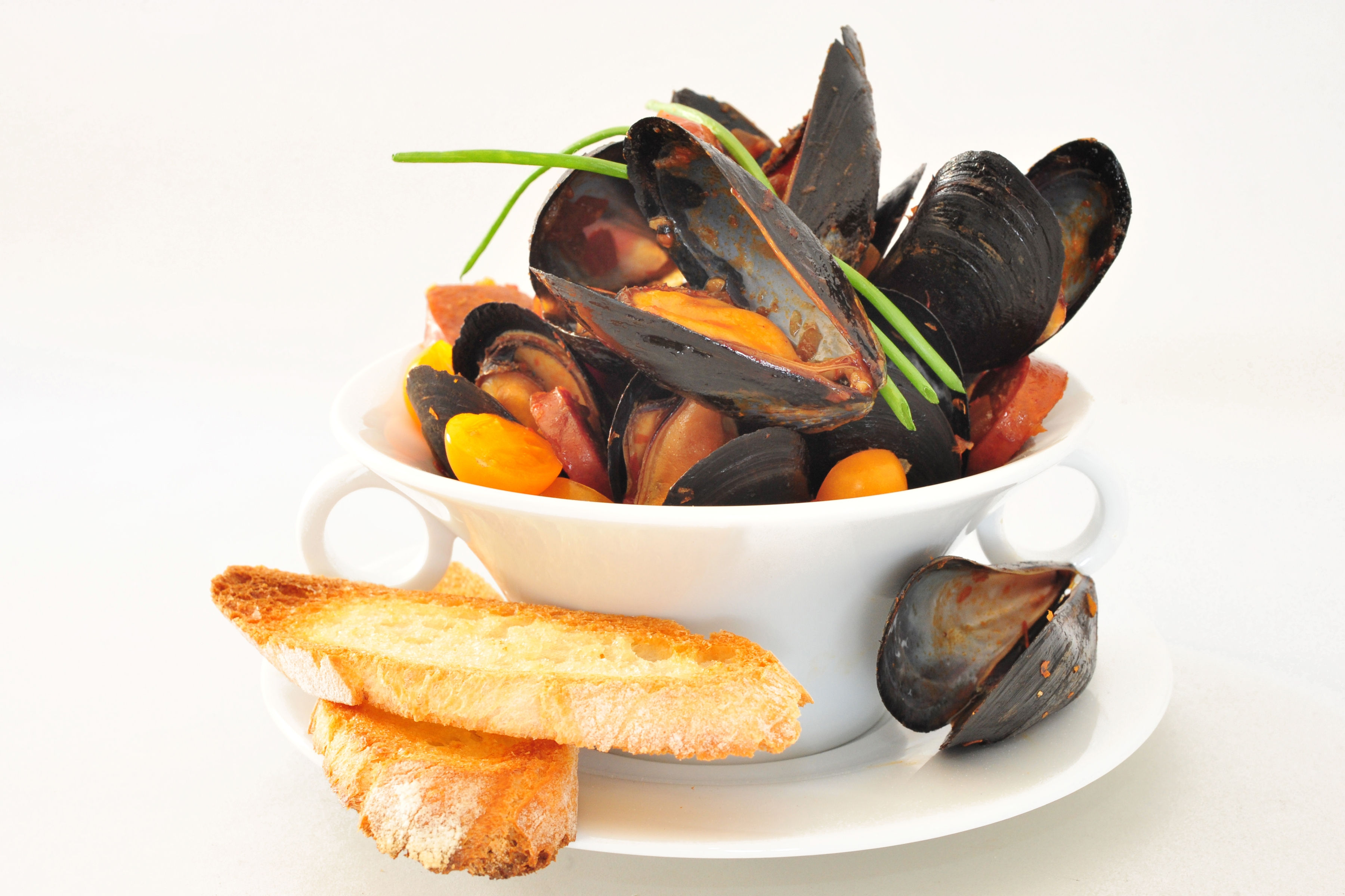 ... mussels in chorizo and tomato broth mussels in chorizo and tomato